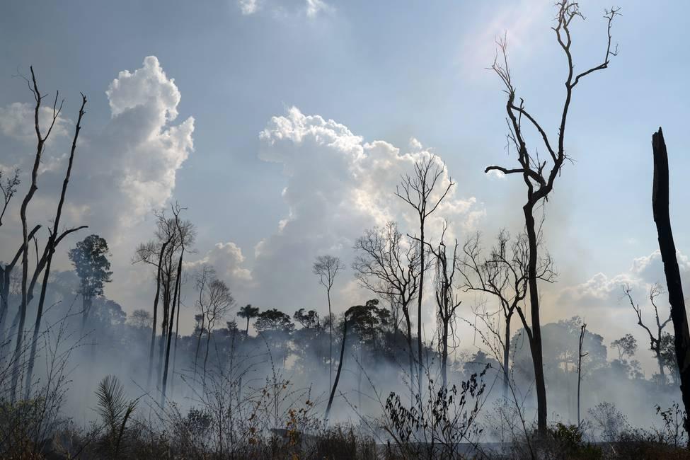 El fuego de la Amazonía y el fuego de Bolsonaro  Entrevista a Josep Pont Vidal
