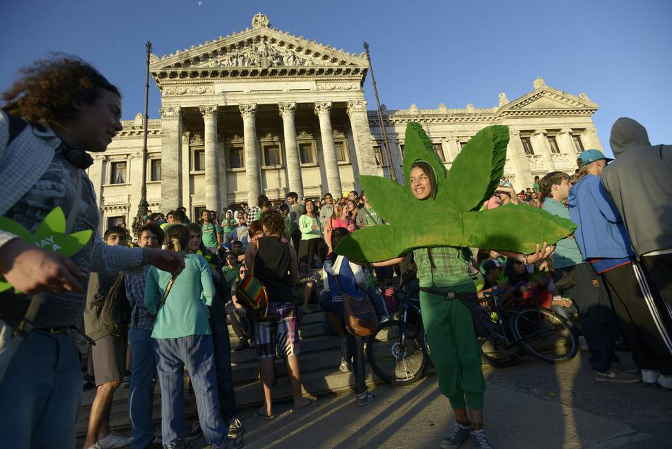 Bastante más que algo  La continuidad del debate sobre la marihuana en Uruguay