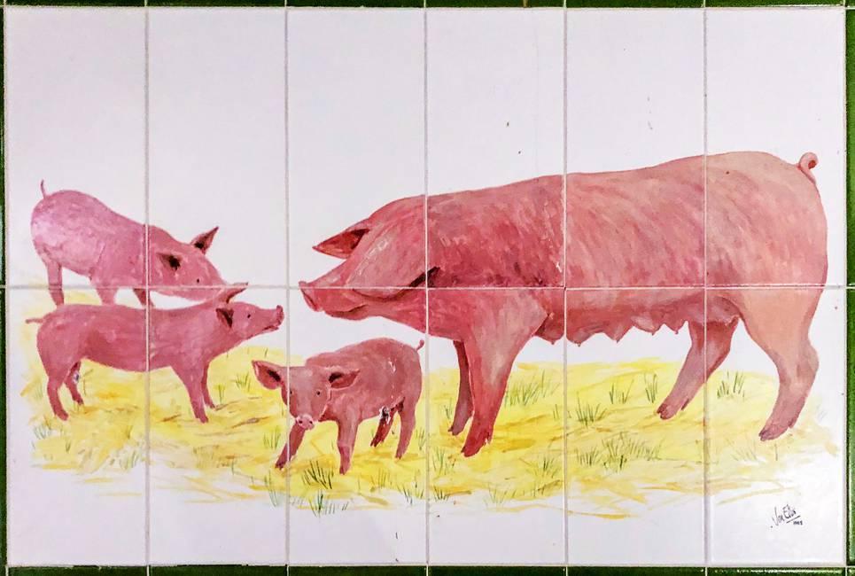 Sistema de cerdos  Un llamamiento a la alimentación sin carnes