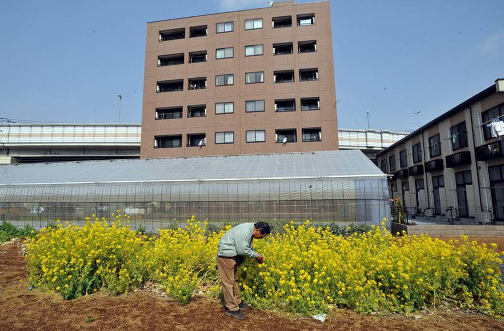 Perspectiva | La ciudad productiva: el gran momento de la agricultura urbana | Marzo 2016