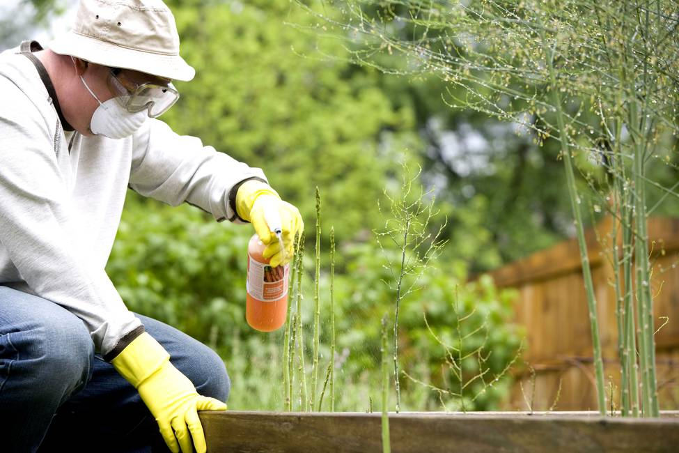 Pesticidas: peligro de muerte  Entrevista a Baskut Tuncak