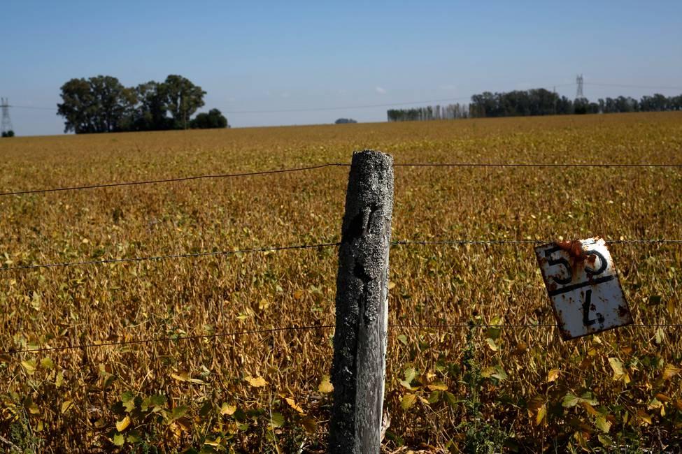 Discutir el «campo»  Una grieta en el suelo latinoamericano