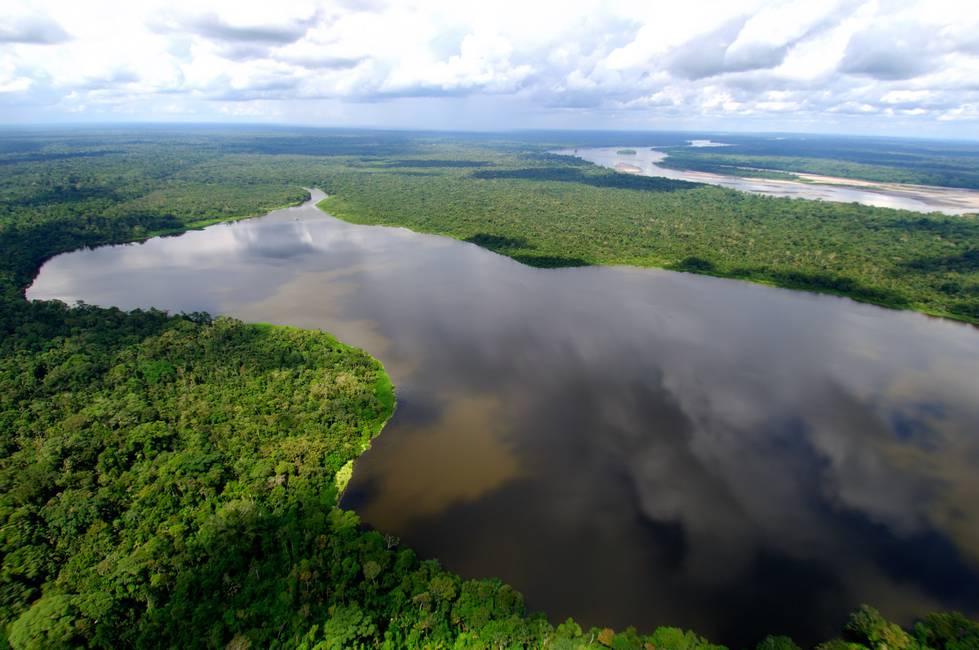 Acción Ecológica: una organización popular ilegalizada en Ecuador
