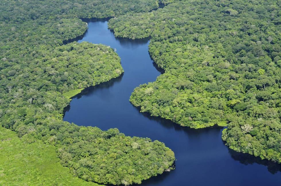 Amazonia, Amazonias  Tensiones territoriales actuales